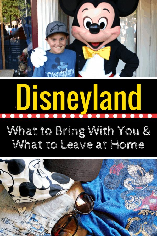 20 things to bring with you on a Disneyland vacation (and the banned items you should leave at home!)