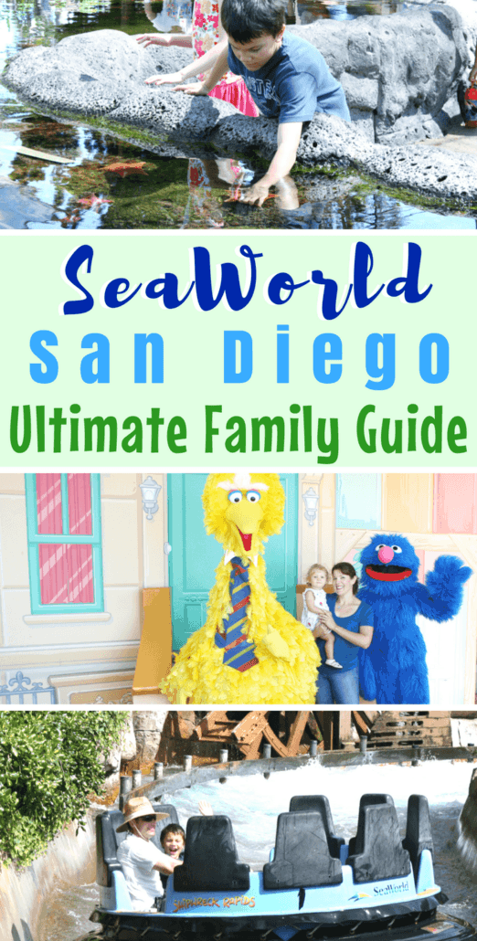 Ultimate guide to SeaWorld San Diego, including what shows to see, what to do and where to eat. There are also tips on seasonal events & special animal interaction tours. #SeaWorld #SanDiego