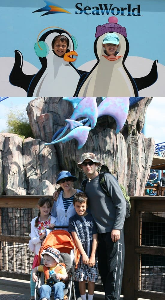 Sea World San Diego Guide