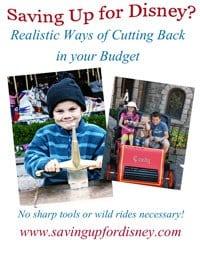 THUMBNAIL-budgetcuts
