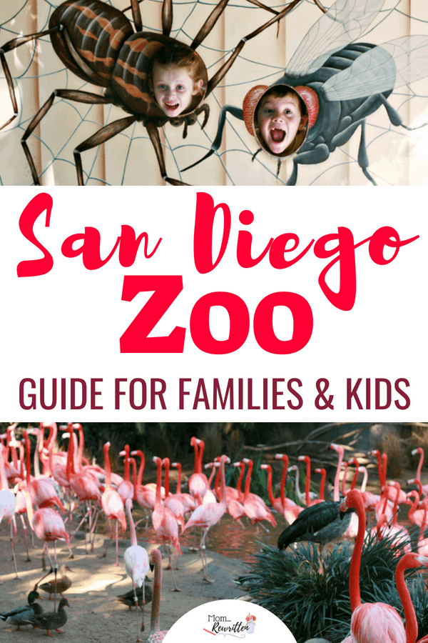 Visiting the San Diego Zoo with kids? Read this ultimate guide on what to do and see, what's new at the Zoo, how to navigate and where to purchase discounted tickets for the San Diego Zoo. #California #SanDiego #SanDiegoZoo #Zoo #Travel #TravelwithKids #FamilyTravel #SoCal #ThemeParks
