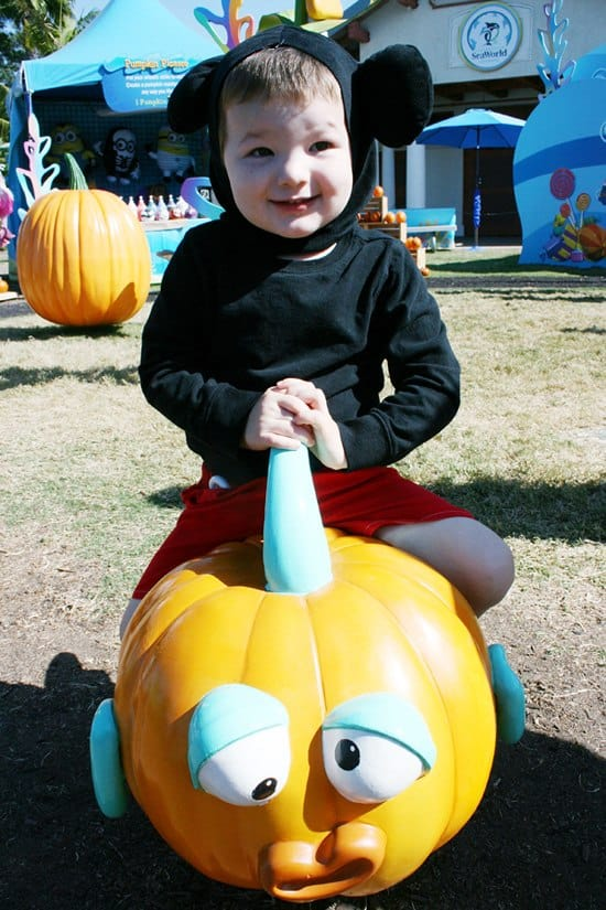 Sea World San Diego - Halloween Spooktacular