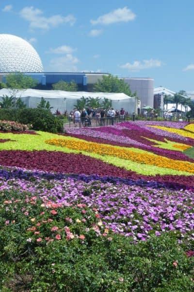 Tips for Disneyland Fans Visiting Walt Disney World