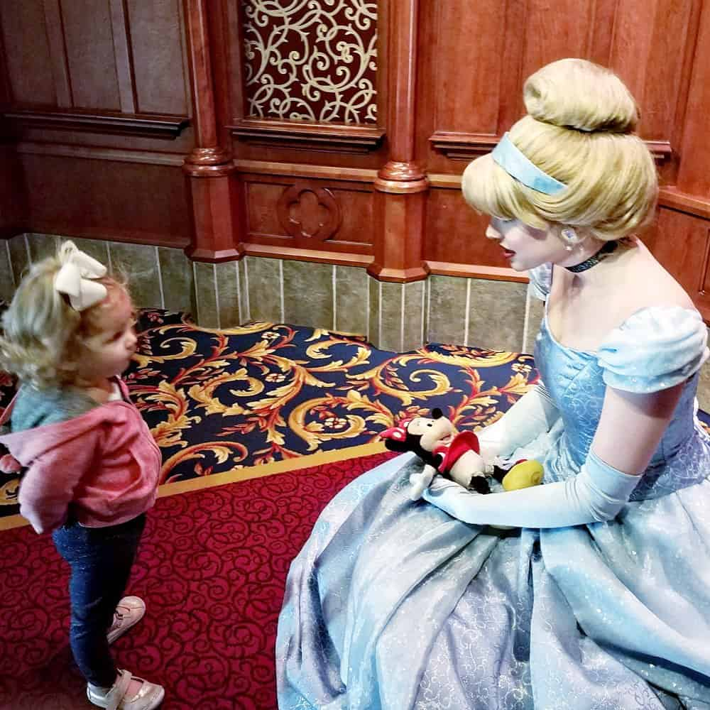 Is your princess Disney princess obsessed? Find out what to see and experience with the Disney princesses at the Disneyland resort in California. #Disneyland