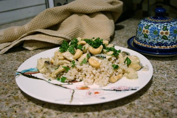 Creamy Cashew Chicken and Rice