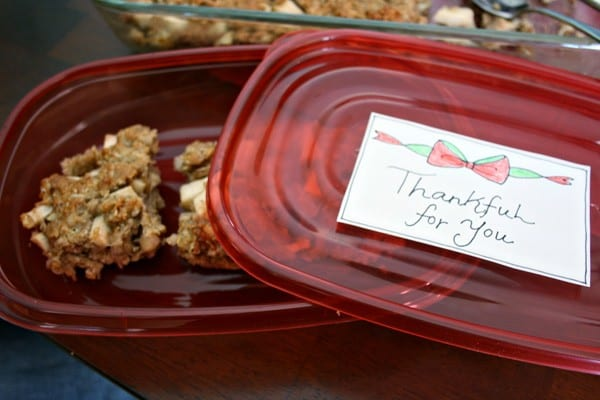 Holiday Dessert-to-Go - Apple Oatmeal Cake Recipe and FREE Printable #ShareTheHoliday