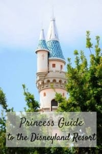 Princess Guide-PIN