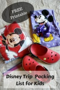 Disney Trip Packing List-PIN