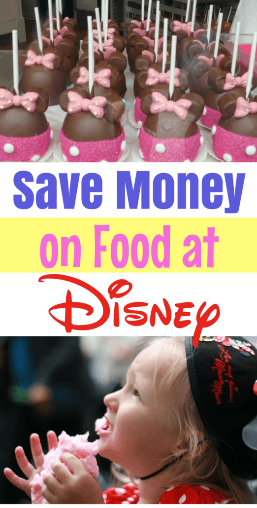 These 7 tips for saving money at Disney will spare you hundreds on the cost of your next vacation! There are tons of budget tips for Disneyland as well as frugal at Disney World ideas.