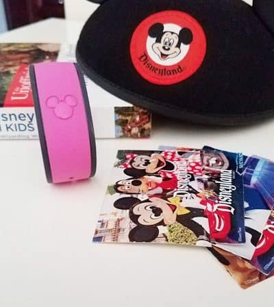 Best Books to Buy When Planning a Disney Trip