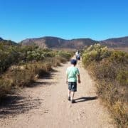 These are five easy and practical ways to help encourage your family towards living a healthier and more active life #NatureMadeFamily #ad
