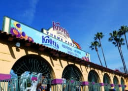 Knott's Berry Farm in Buena Park celebrates at their annual Boysenberry Festival. See what amazing boysenberry-inspired foods there are to taste as well as a guide on what to see and experience during this unique special event! #VisitBuenaPark