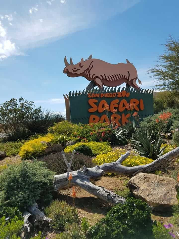 Visiting the San Diego Zoo Safari Park with kids? Read this ultimate guide on what to do and see, what's new at the Safari Park, how to navigate and where to purchase discounted tickets for the San Diego Zoo Safari Park.